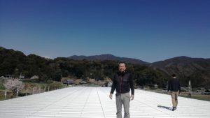 天然乾燥場の屋根の上