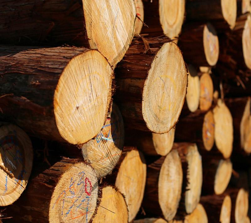 しもで木材|会社案内2